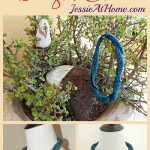 Dragon Collar ~ Jessie At Home