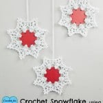 Crochet Snowflake Using Punched Hole ~ Erangi Udeshika - Crochet For You