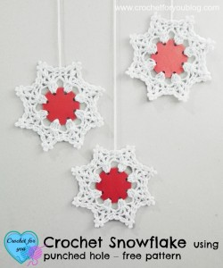 Crochet Snowflake Using Punched Hole ~ Erangi Udeshika - Crochet For You