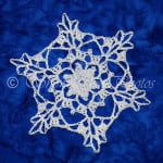 Waterton Snowflake ~ Snowcatcher