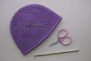 Basic Single Crochet Beanie ~ Crochet Treasures