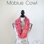 Mixed Up & Twisted Mobius Cowl by The Stitchin' Mommy
