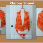 Blessings Ombre Shawl ~ Sara Sach - Posh Pooch Designs