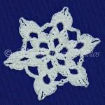 Autumn III Snowflake ~ Snowcatcher