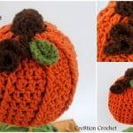 Infant Pumpkin Hat ~ Lorene Eppolite - Cre8tion Crochet