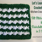 Silt Stitch Dishcloth by The Stitchin' Mommy