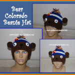 Bear Colorado Beanie Hat by Sara Sach of Posh Pooch Designs
