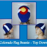 Colorado Beanie Top Down by Sara Sach of Posh Pooch Designs