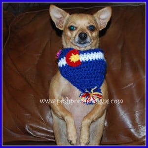 Colorado Flag Dog Bandanna by Sara Sach of Posh Pooch Designs