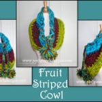 Fruit Striped Cowl by Sara Sach of Posh Pooch Designs