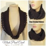 Mesh Picot Cowl by Rhelena of CrochetN'Crafts
