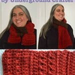 Color Blocked Co-Ed Scarf by Marie Segares/Underground Crafter