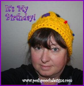Birthday Crown Headband by Sara Sach of Posh Pooch Designs