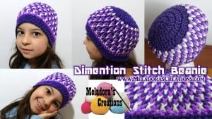 Dimension Stitch Beanie by Meladora's Creations