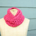 End of Winter Double Strand Infinity Scarf by One Dog Woof