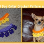 Marigold Dog Collar by Sara Sach of Posh Pooch Designs