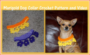 Marigold Dog Collar by Sara Sach of Posh Pooch Designs