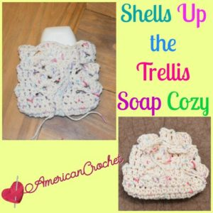 Shells Up the Trellis Soap Cozy by American Crochet