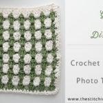 Granny Stripe Dishcloth by The Stitchin' Mommy