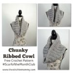 Chunky Ribbed Cowl by The Stitchin' Mommy