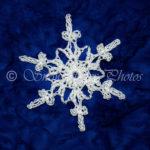 Aspen Snowflake by Snowcatcher