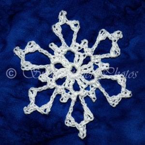 Thunder Bowl Snowflake by Snowcatcher