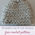 Shimmering Frost Beanie by Marie Segares/Underground Crafter