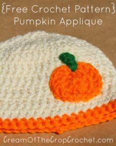 Pumpkin Applique by Cream Of The Crop Crochet