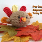 Amigurumi Turkey by Enchanted-ladybug.com