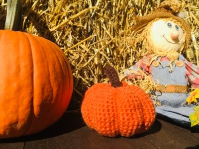 Adorable Crochet Pumpkin Pattern by Viana Boenzli from Maplewoodroad.com
