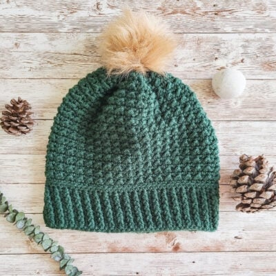 The Arctic Beanie by Shannon Holding from The Loophole Fox