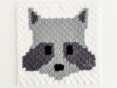 c2c Raccoon Square by Melissa Hassler from Lovable Loops