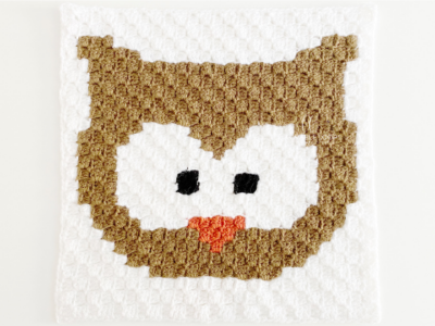 c2c Owl by Melissa Hassler from Lovable Loops.